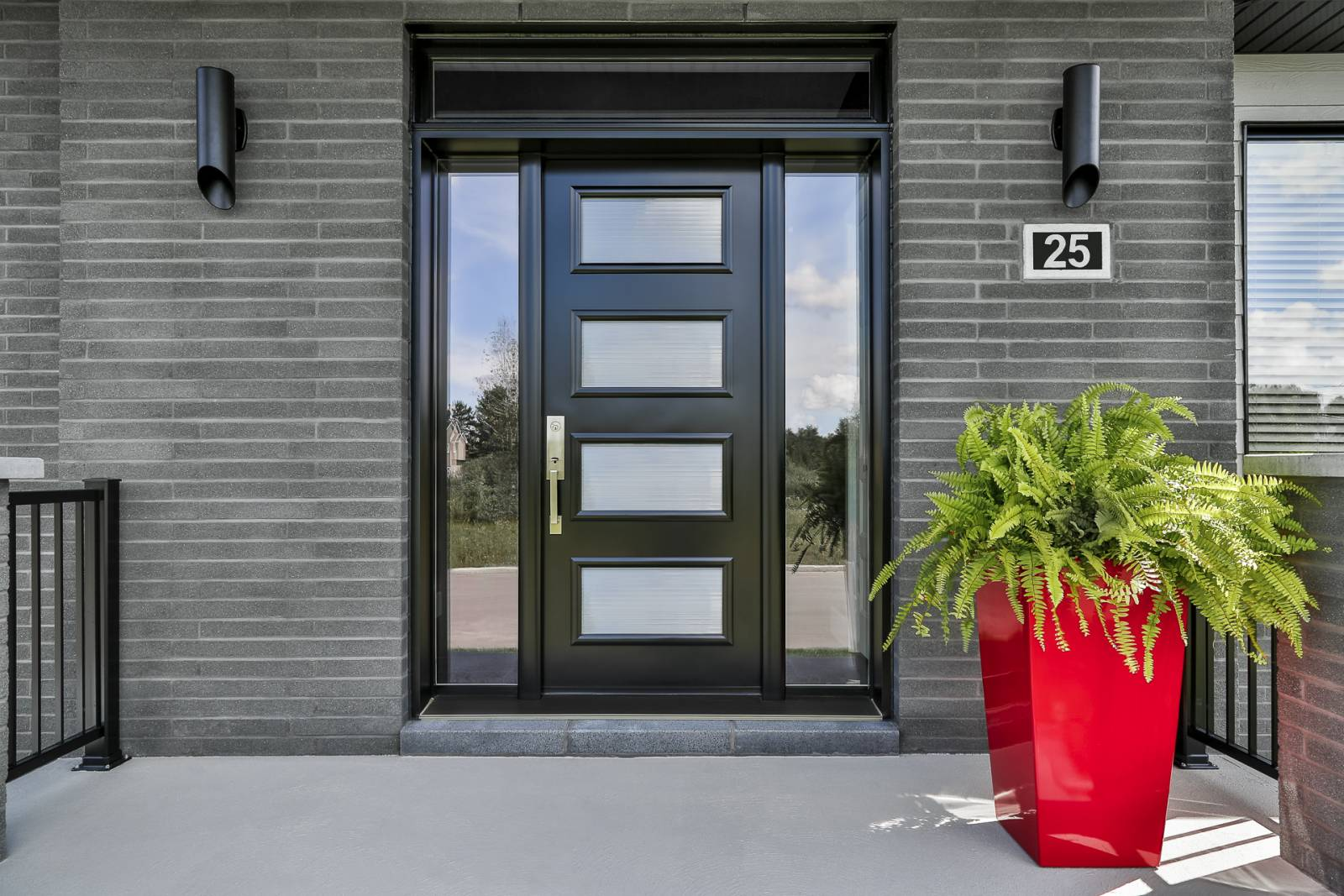 porte d'entrée noire avec 4 hublots